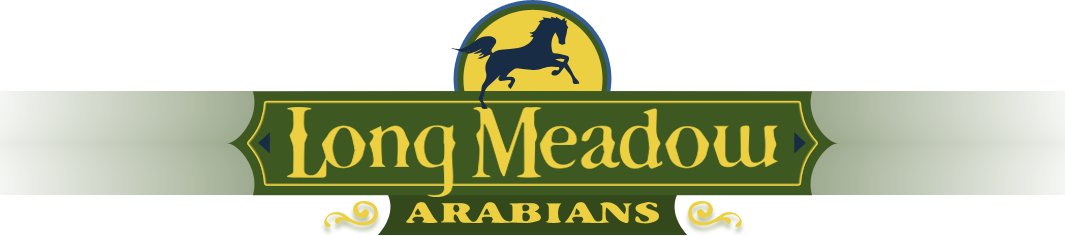 Long meadow logo