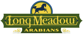 Long meadow mobile logo